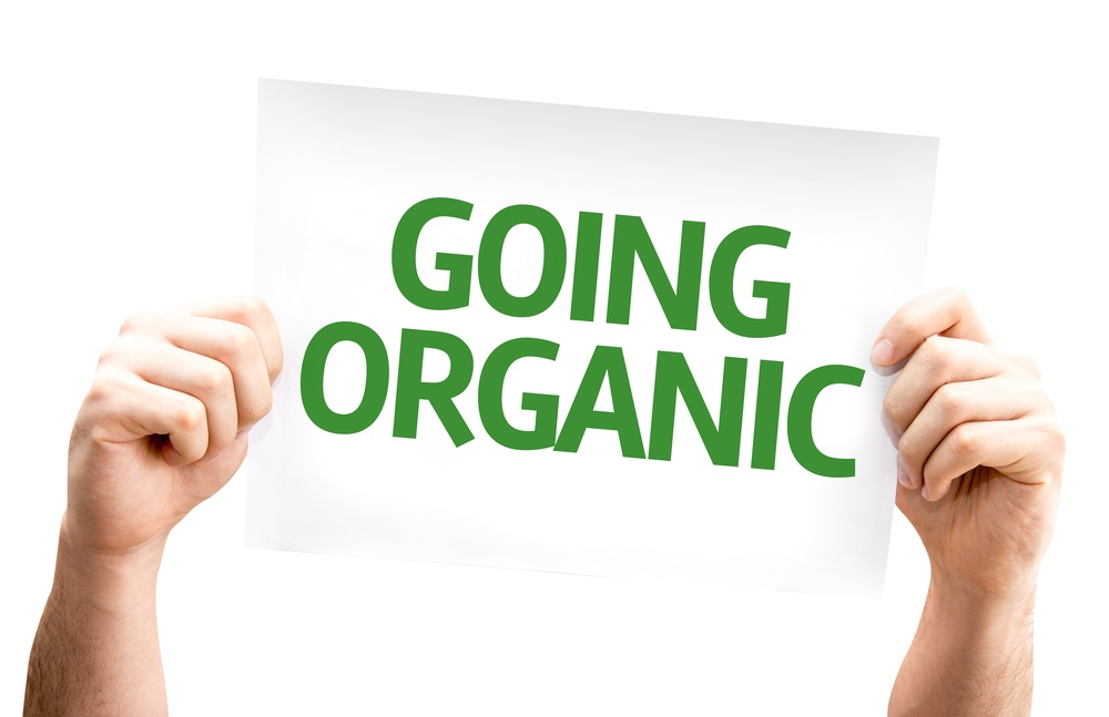 Is Organic Lawn Care a Good Option for My Home in Allentown or Bethlehem PA?
