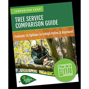 tree comparison guide